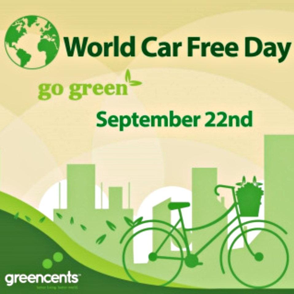 Car-free days go back to oil crisis
