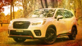 Subaru Forester: Better off red